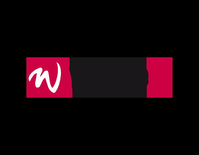 Wise IT-logo